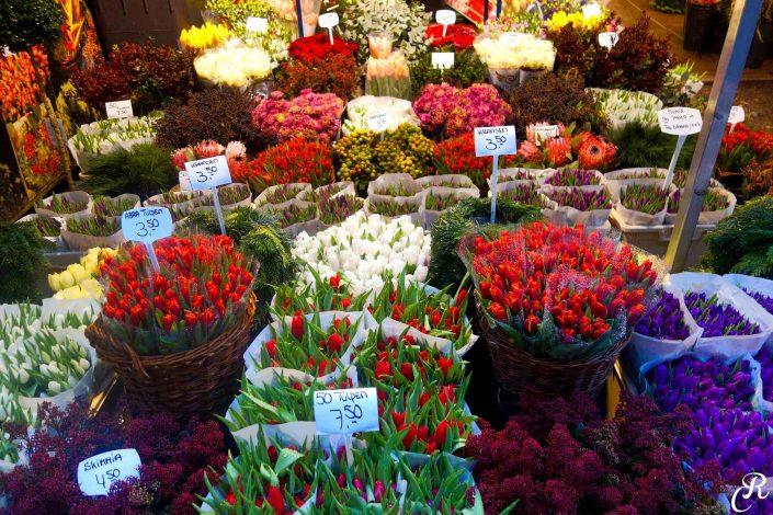 Marché aux fleurs à Amsterdam