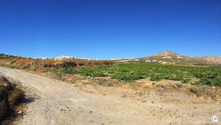 Vue sur Pyrgos Kallistis depuis les vignes derrière Megalochori