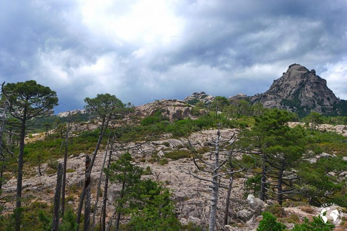 Randonnée vers Piscia di Gallo