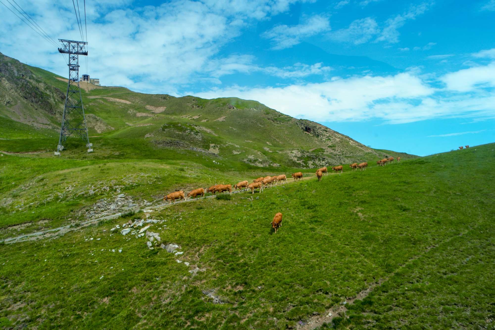 Montée au Pic du Midi par le téléphérique