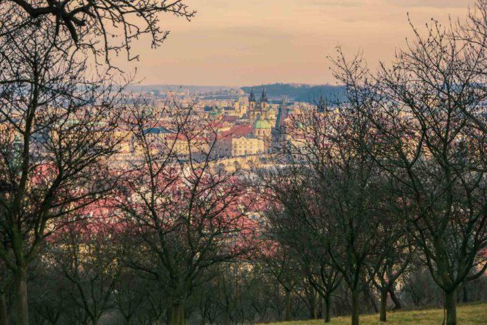 Le parc de Petřín