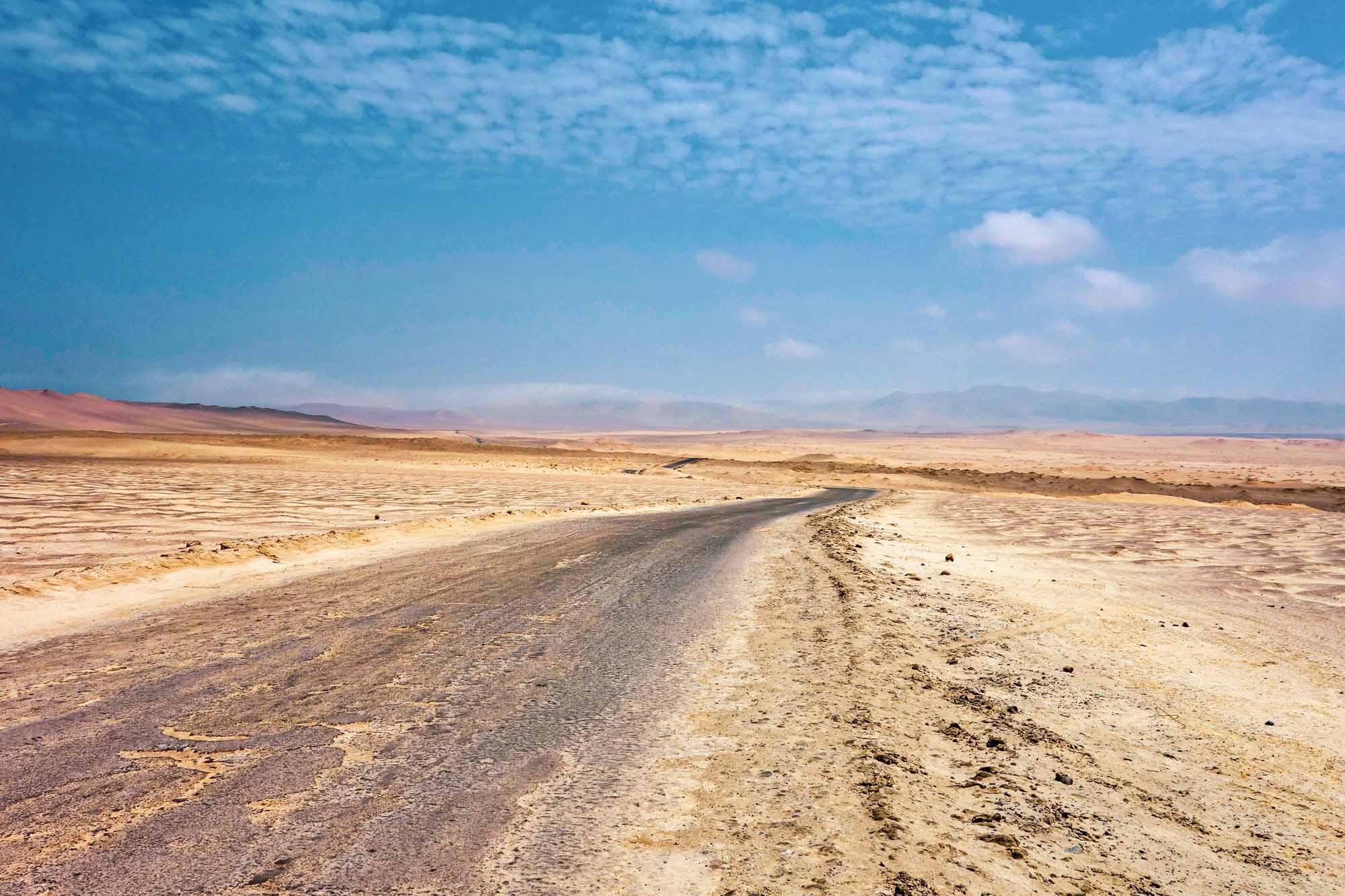 La réserve nationale de Paracas au Pérou