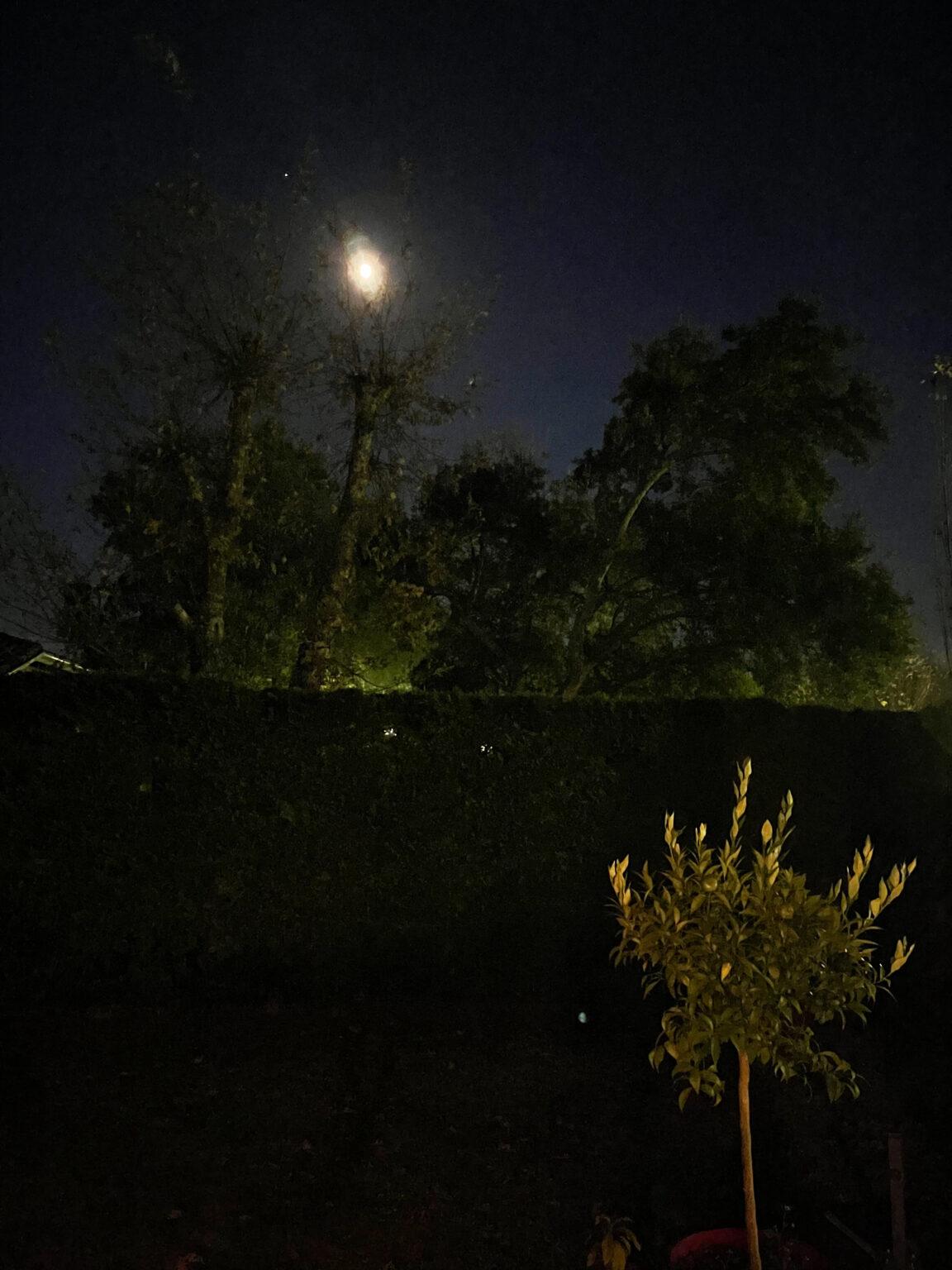 Photo de nuit prise à l'Phone 12 Pro Max - mode nuit désactivé