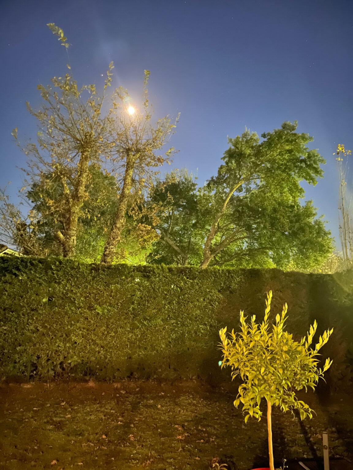 Photo de nuit prise à l'Phone 12 Pro Max - mode nuit au max